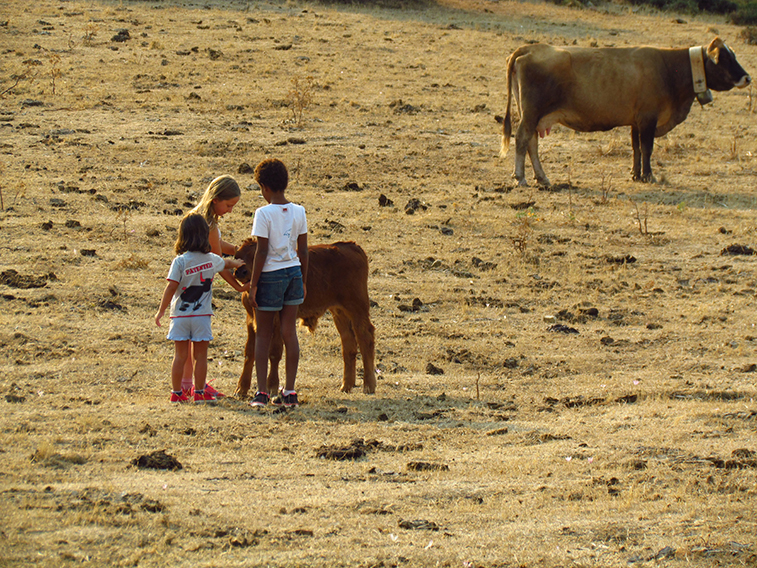 Rural-sicily-with-kids